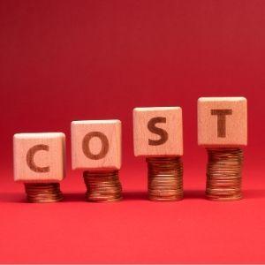 Kosten van het platform