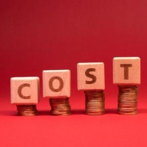 Viainvest kosten